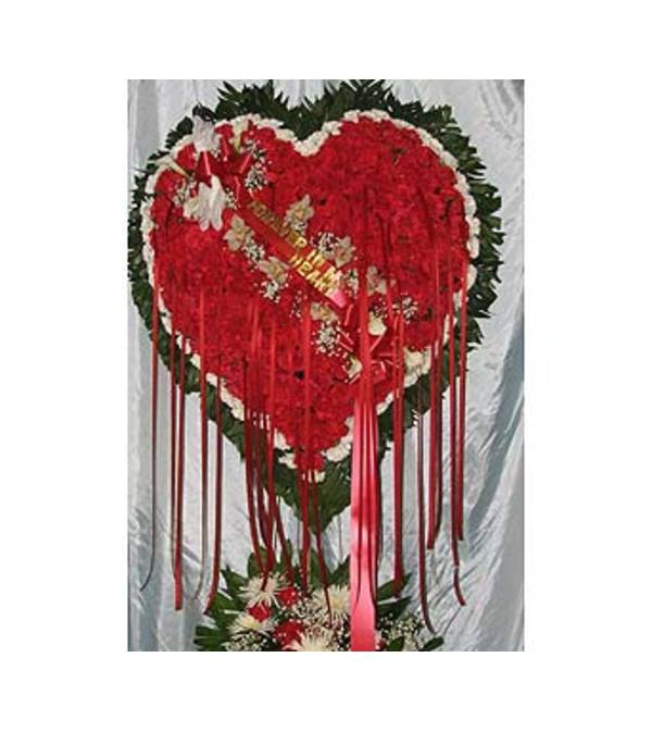 Bleeding Heart with White Carnation Border