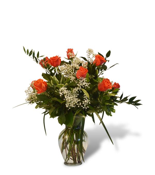Premium Dozen Roses in Orange