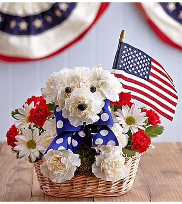 Patriot Pup