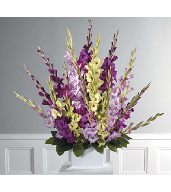 Traditional  Purple Gladiolus Spray   SF44-21
