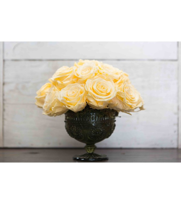 Preserved Rose Arrangement