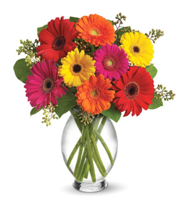 Gerbera Brights Bouquet