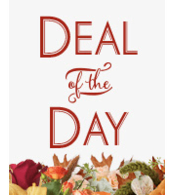 "DESIGNER""S CREATION - DEAL OF THE DAY"
