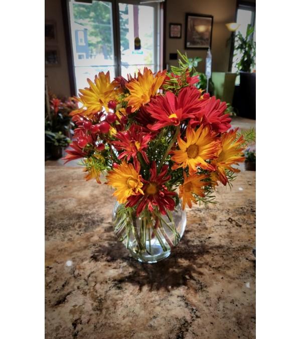 Fall Daisy Bowl