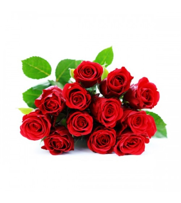 12 Wrapped Classic Red Roses