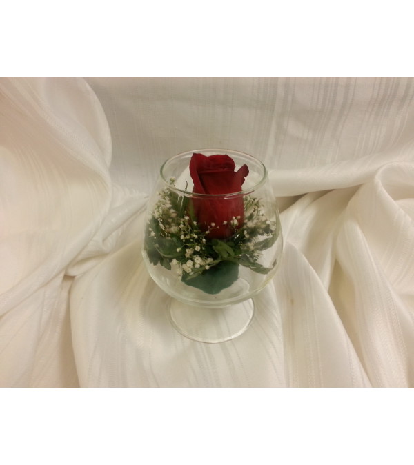 Single Red Rose in bowl