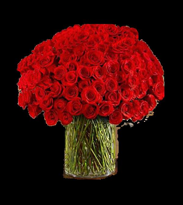 100  Long Stem Red Roses