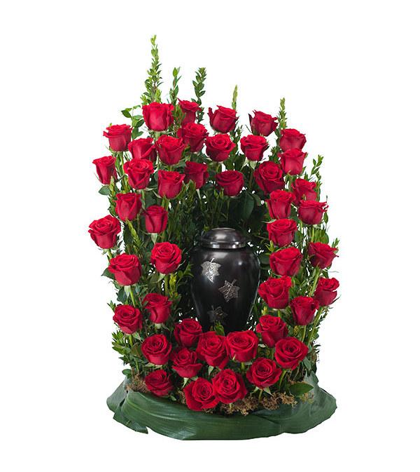 Royal Rose Surround DW