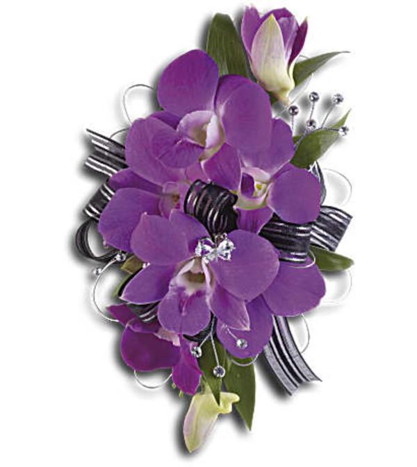 Purple promise Wrislet