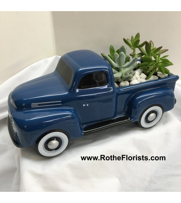 '48 Ford Pickup Truck with Succulents