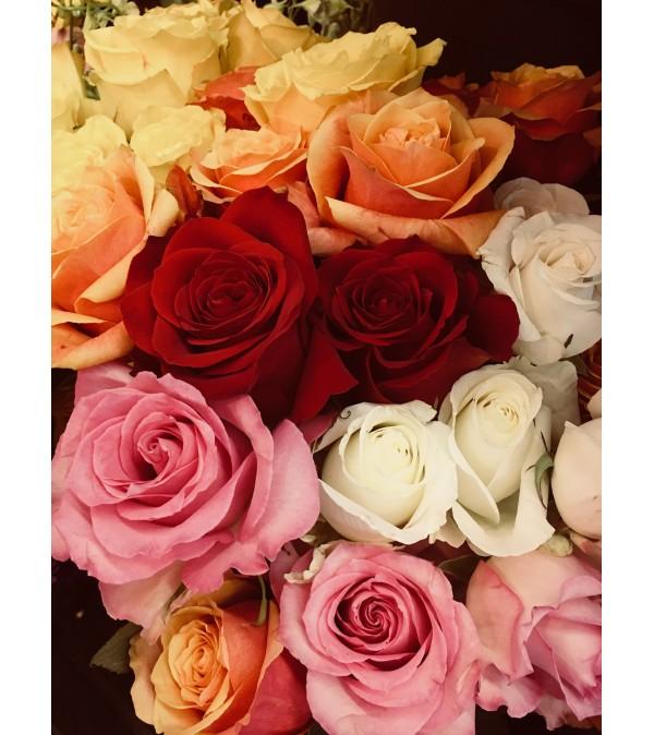 2018 Summer Rose Special