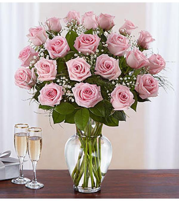 Pink Roses Two Dozen