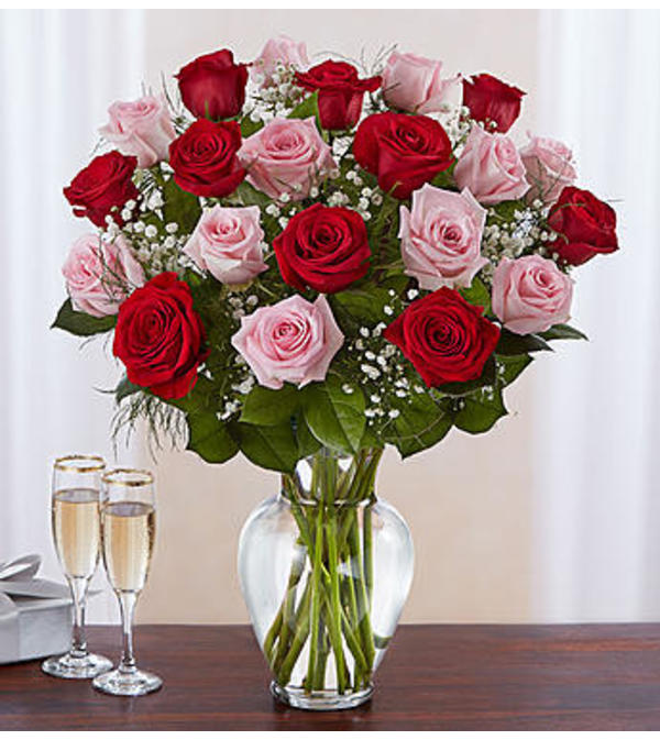 Pink and Red Roses Two Dozen