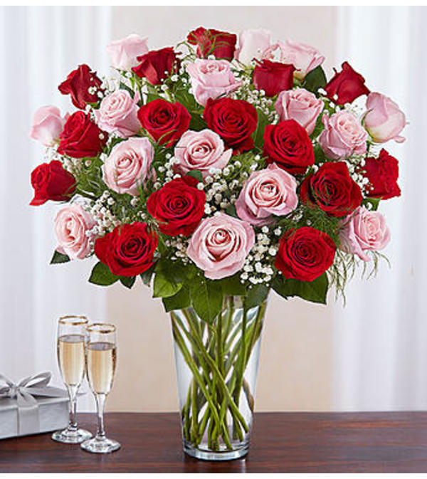 Pink and Red Roses Three Dozen