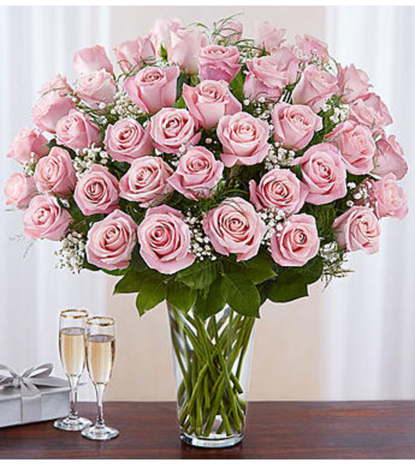Pink Roses Four Dozen Charlotte Nc Florist