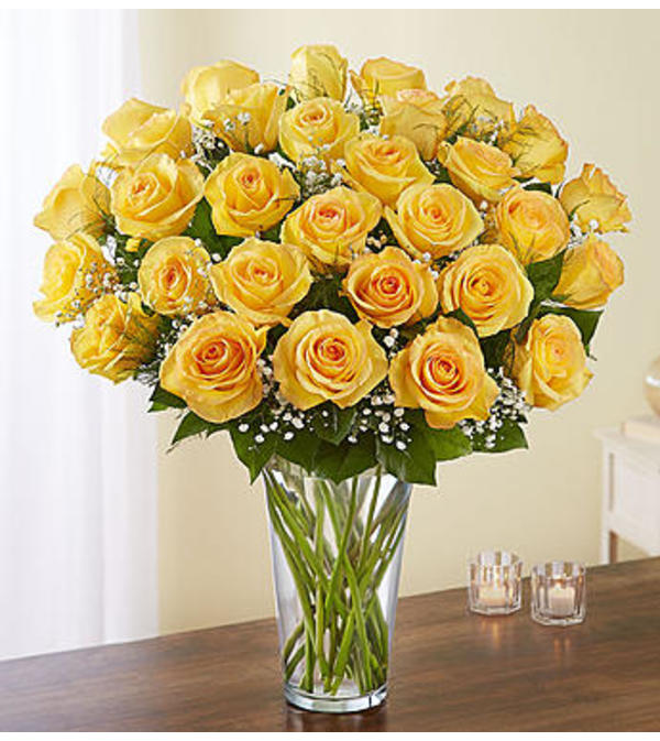 Yellow Roses Three Dozen