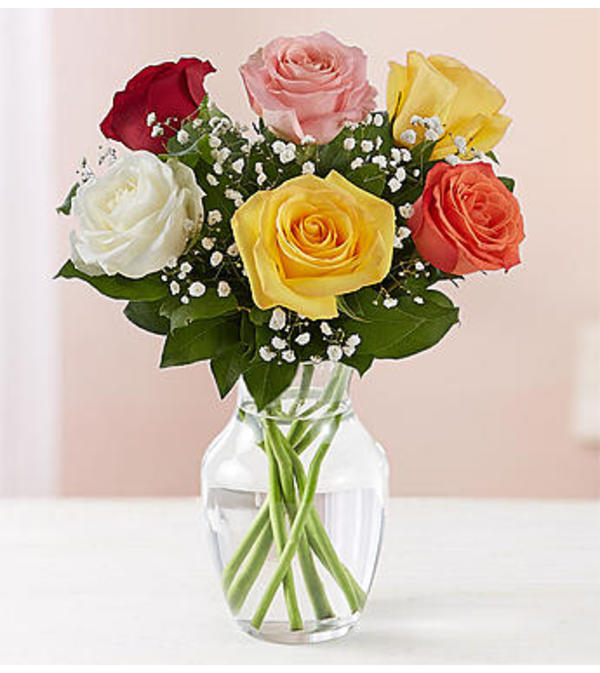 Assorted Roses Six