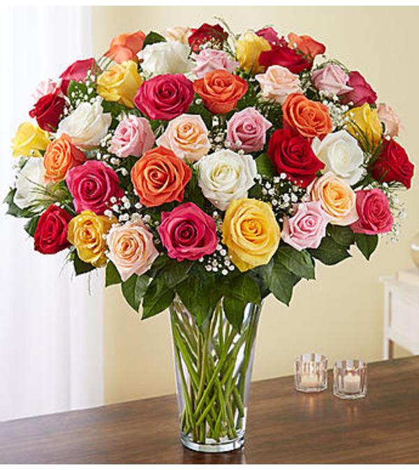 Assorted Roses Four Dozen Charlotte Nc Florist