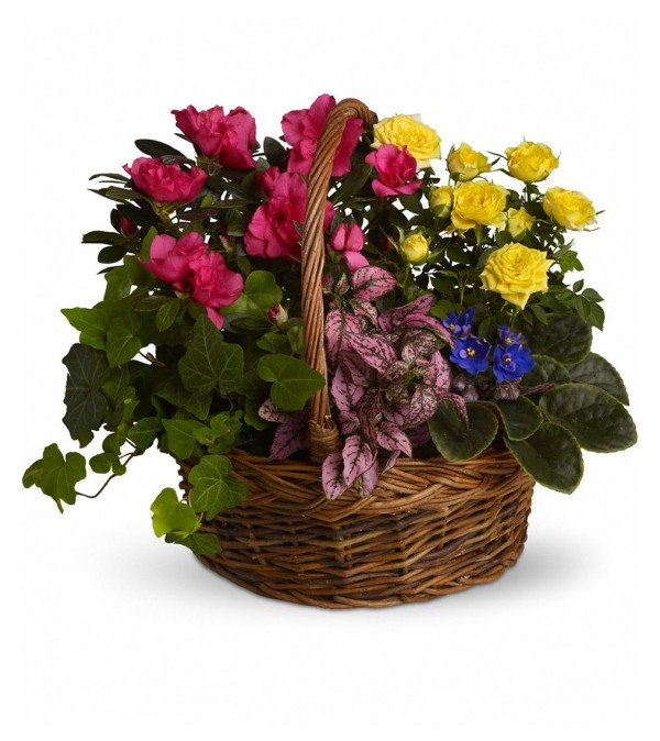 The Blooming Garden Basket
