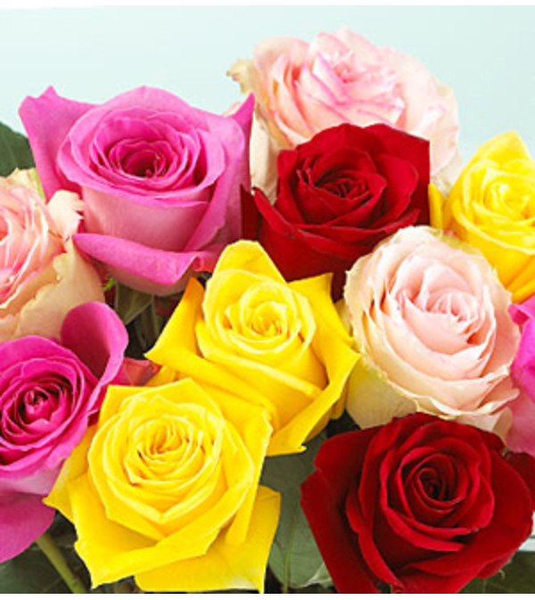 Mixed Roses - 2018 Summer Special