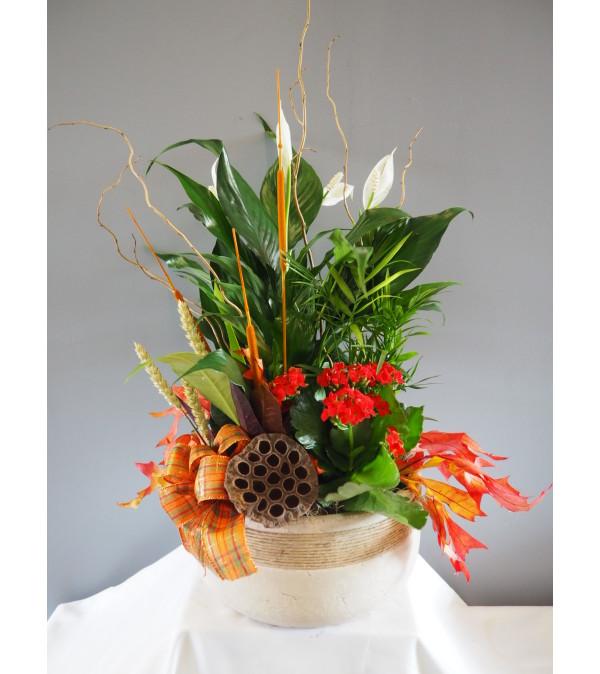 Blooming Fall Stoneware