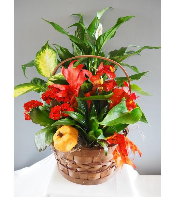 Fall Flowering Basket Arrangment
