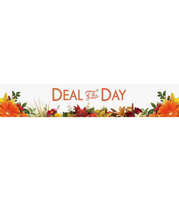 DEAL OF THE DAY FALL