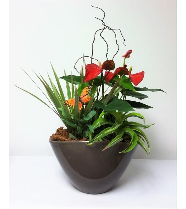 Perfect Planter