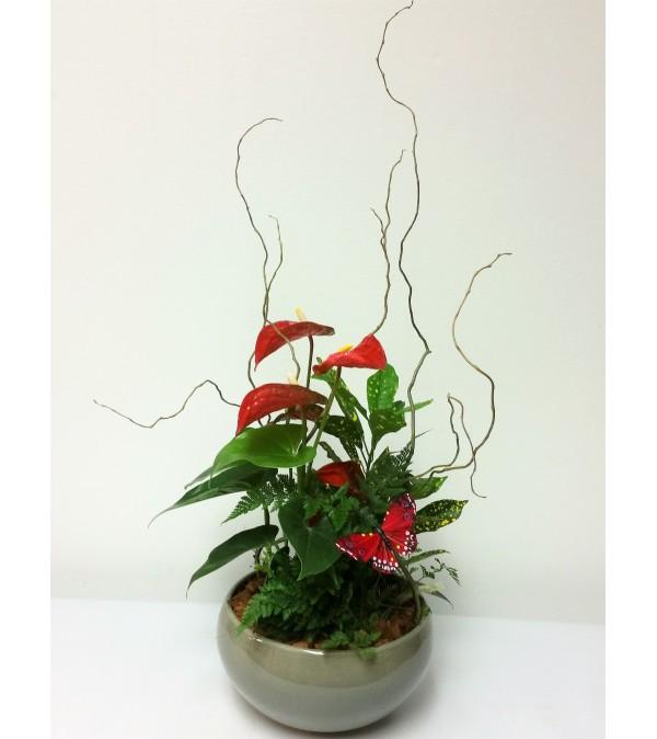 Posh Planter
