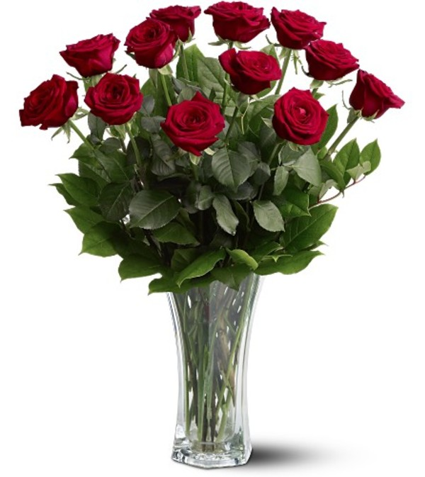A Beautiful  Dozen Premium Red Roses