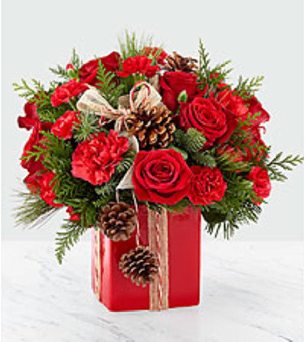 Gracious Gift 2018
