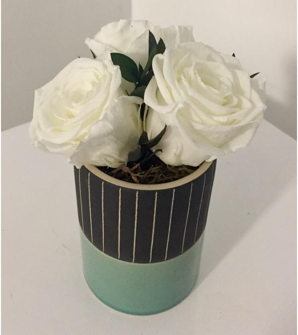 Preserved Rose Arrangement White