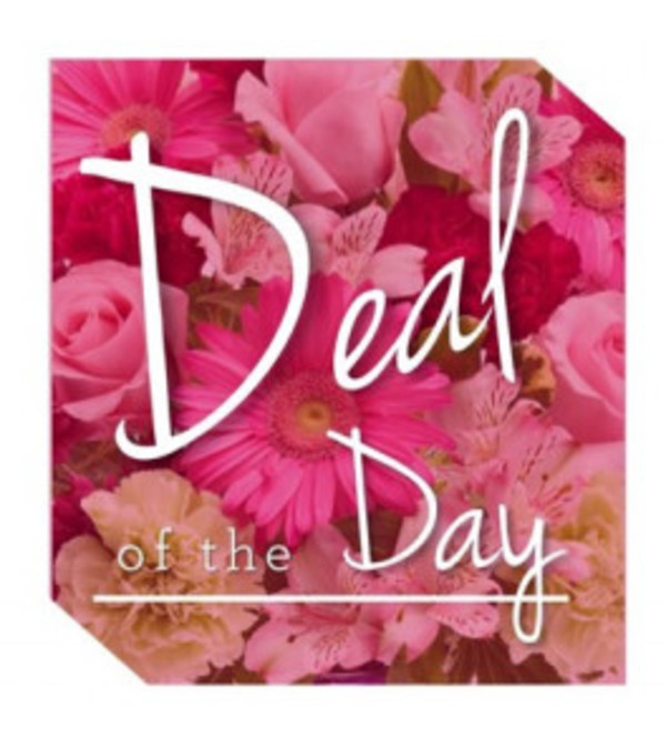 Florist's Deal of the Day