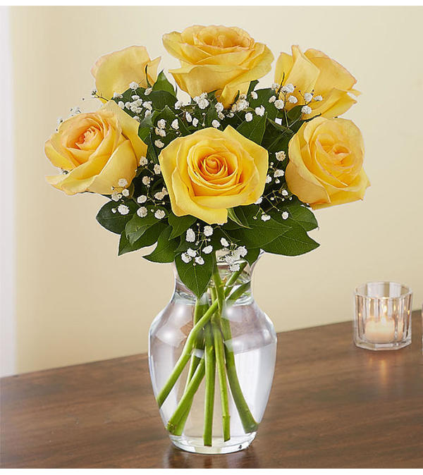 6 YELLOW ROSES