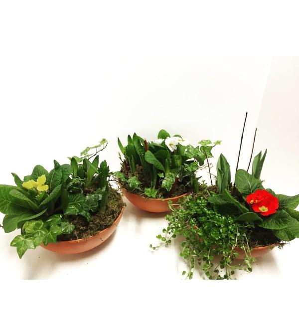 Sweet Spring Bulb Planter