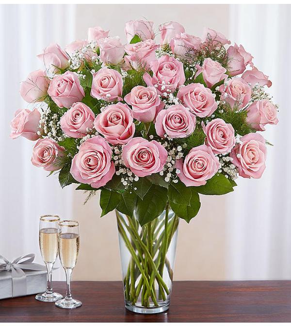 Ultimate Pink Roses 24, 36, 48 Long Stem