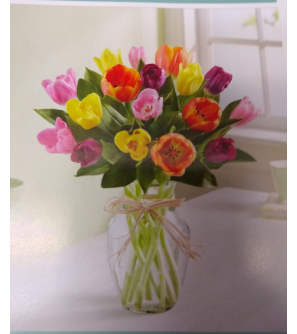 Flowerama Timeless Tulips