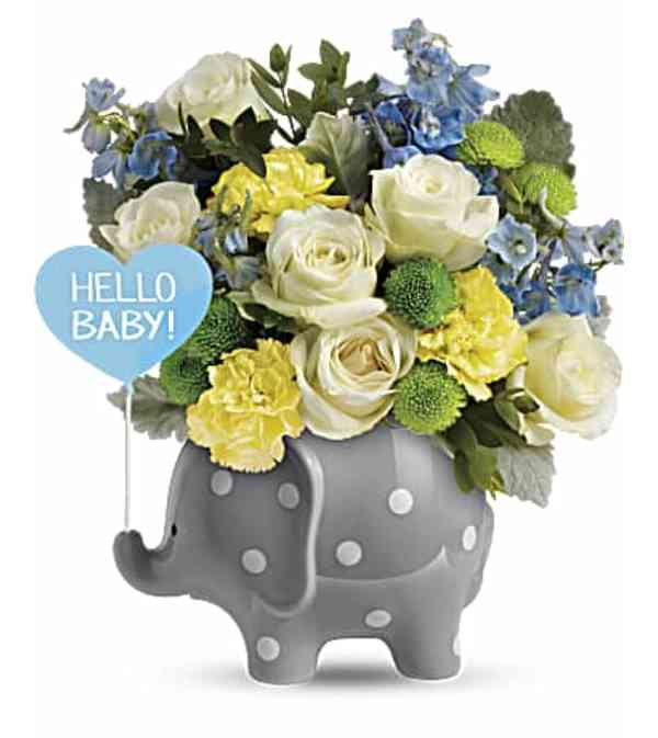 Hello Sweet Baby - Baby Boy TNB07-1