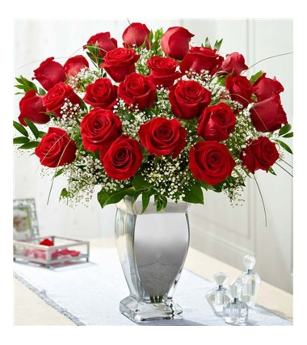 Long Stem Premium Roses in Silver Vase Two Dozen