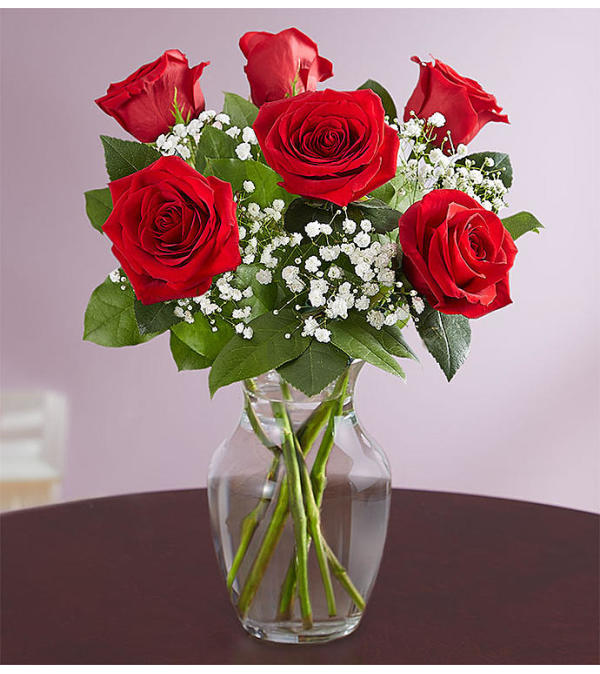 Love's Embrace Six Red Roses