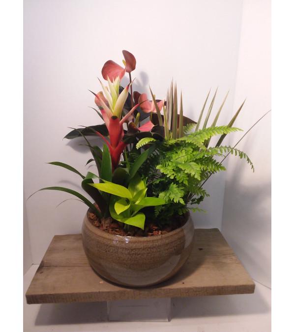 Premium Collection Tropical Bowl