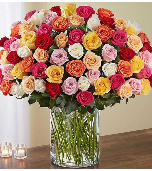 Long Stem Multicolored Roses 100