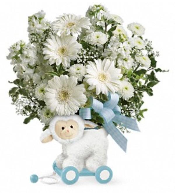 Sweet Little Lamb - Blue