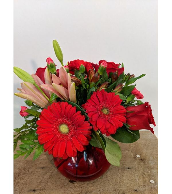 Red Hot Blooms
