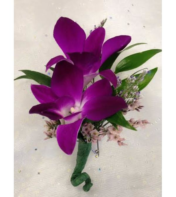 Bout 4 - Purple dendrobium orchids (pick up only)