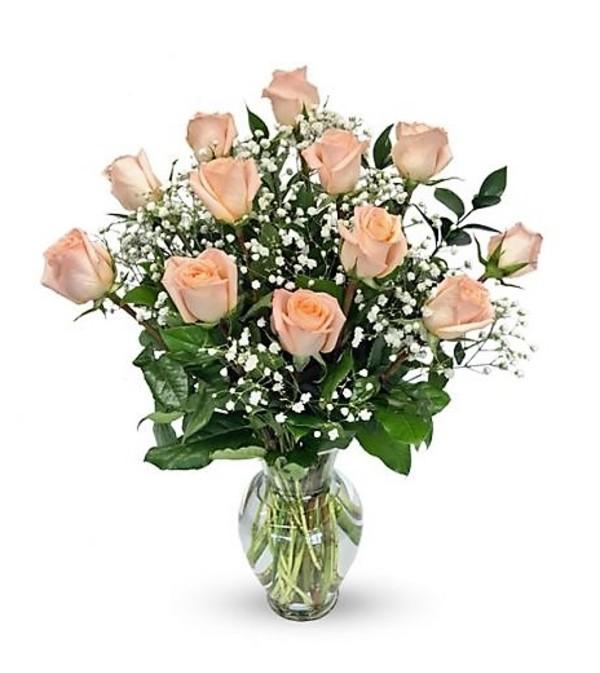 Roses (Peach/Orange)-Glenda