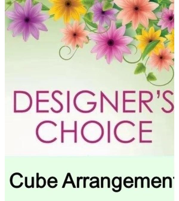 Cube Arrangement-Designer's Choice Sympathy
