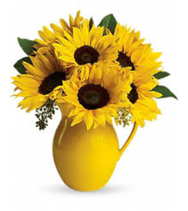 Yellow Sunny Day Pitcher
