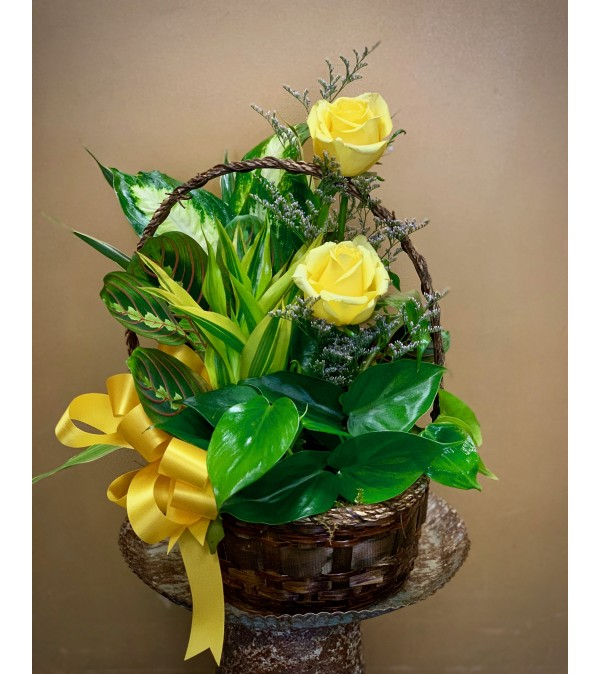 Dish Garden Basket with Yellow Roses
