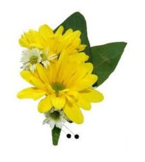Yellow daisy rose bout.